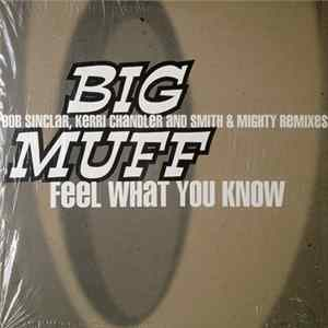 Download Big Muff - Feel What You Know
